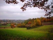 金黄秋天风景;黄色和红色叶子、fileds和草甸 免版税库存照片