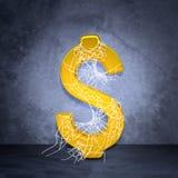 金黄美元的符号蜘蛛网 库存图片