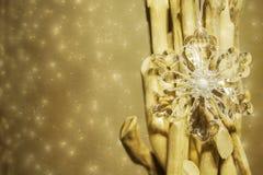金黄背景的圣诞节 免版税库存照片