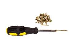 金黄螺丝和螺丝刀 免版税库存图片