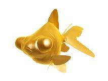 金黄金鱼 图库摄影