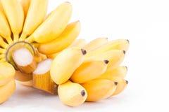 金黄香蕉的成熟蛋香蕉和手在白色被隔绝的背景健康Pisang Mas香蕉果子食物的 免版税库存照片