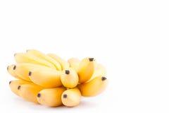 金黄香蕉的新手在白色被隔绝的背景健康Pisang Mas香蕉果子食物的 免版税库存图片