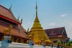 金黄马的雕塑 寺庙泰国 Chiangmai 库存照片