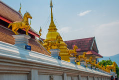 金黄马的雕塑 寺庙泰国 Chiangmai 库存图片
