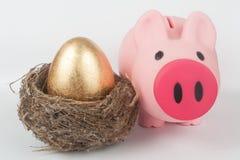 金黄鸡蛋、存钱罐和鸟筑巢 免版税库存照片