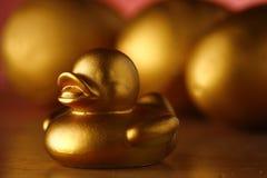 金黄鸡蛋和金黄鸭子 图库摄影