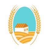 金黄麦田、耳朵、房子和蓝天 秋天横向 图库摄影