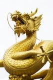 金黄龙雕象  免版税库存图片