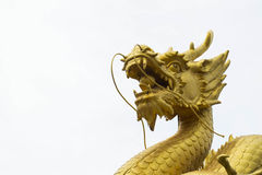 金黄龙雕象  免版税库存照片
