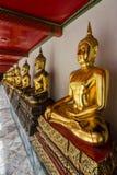 金黄Buddhas行  免版税库存图片