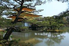 金黄kinkakuji京都pavillion寺庙 免版税库存图片