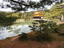 金黄Pavillion (Kinkaku籍寺庙),京都,日本 免版税图库摄影