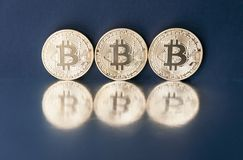 金bitcoin三枚硬币在镜子表面被反射 真正事务的概念 库存照片