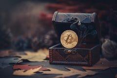 金bitcoin 珍宝-隐藏货币神奇秋叶 在黑暗的背景的老木箱真正金钱 温暖定调子 免版税库存照片