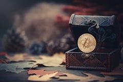 金bitcoin 珍宝-隐藏货币神奇秋叶 在黑暗的背景的老木箱真正金钱 温暖定调子 免版税库存图片