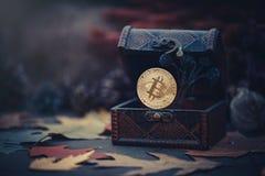 金bitcoin 珍宝-隐藏货币神奇秋叶 在黑暗的背景的老木箱真正金钱 温暖定调子 免版税图库摄影