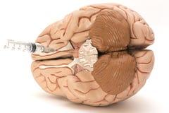 针、注射器和人脑在白色背景塑造 免版税库存图片