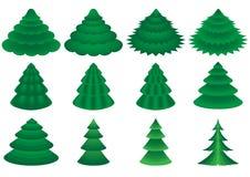 针叶树向量 库存图片