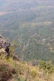 针岩石观点, Gudalur, Nilgiris, Tamilnadu,哥印拜陀 免版税库存照片