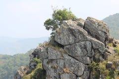针岩石观点, Gudalur, Nilgiris, Tamilnadu,哥印拜陀 免版税库存图片