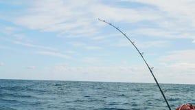 钓具旋转的鱼 股票录像