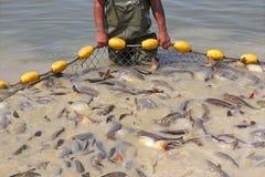 钓鱼与净额 图库摄影