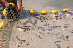 钓鱼与净额 库存照片