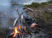 钓鱼中断 免版税库存图片