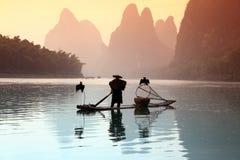 钓鱼人的鸟中国鸬鹚 免版税图库摄影