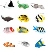 钓鱼例证 免版税库存照片