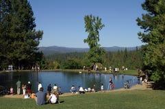 钓鱼公园的系列 免版税图库摄影