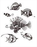 钓鱼单色热带 向量例证