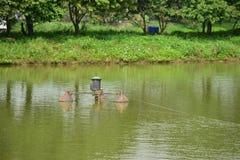 钓鱼和种田池塘 库存图片