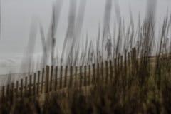 钓鱼在一个有雾的海滩 免版税库存照片