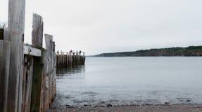 钓鱼在一个船坞末端的人们春天 新斯科舍海岸线在6月 图库摄影