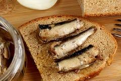 钓鱼在一个玻璃瓶子的西鲱罐头 库存图片