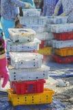 钓鱼在塑料盘子在长的海氏鱼市上 免版税库存图片