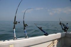 钓鱼在大湖 库存图片