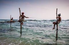 钓鱼在斯里南卡 图库摄影