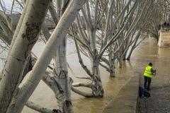 钓鱼在河塞纳河被充斥的河岸,巴黎 库存照片