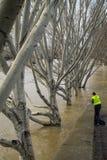 钓鱼在河塞纳河被充斥的河岸,巴黎 库存图片