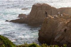 钓鱼在海岸 图库摄影