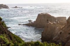 钓鱼在海岸 免版税库存照片