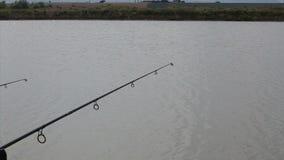 钓鱼在湖在罗马尼亚 股票录像