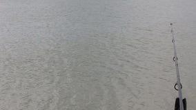 钓鱼在湖在罗马尼亚 股票视频