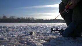 钓鱼在湖的冬天的一位老人渔夫 捕鱼冰谎言捕捉冬天zander 渔夫钓鱼捕鱼漏洞冰冬天 4K 股票录像