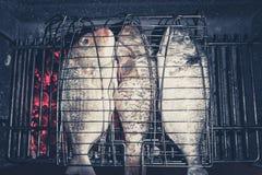 钓鱼在烤肉格栅-在火的三条鱼 图库摄影