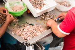 钓鱼在鱼市上在卡塔尼亚,西西里岛 图库摄影
