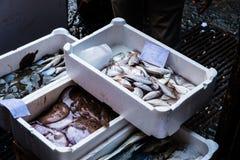 钓鱼在鱼市上在卡塔尼亚,西西里岛 库存照片